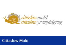 Cittaslow Mold Button
